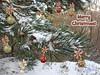 The Silence of the snow ☆  Merry Christmas ☆ (George @) Tags: christmasstar christmastree merrychristmas merry christmas wintersnow snowfall snowing snowy snow tree καλάχριστούγεννα χιόνι χιόνια χιονόπτωση silentnight χριστουγεννιάτικοδέντρο χρονιαπολλα χρόνιαπολλά branching branch branches fork κλαδιά δέντρο forest hope wishes δάσοσ φύση pine πεύκο πεύκη wood woodland grove άλσοσ διακλάδωση ξύλο george papaki eyes photography photografer photografia φωτογραφία georgeeyesphotography georgeeyes ελλάδα greece visitgreece greekphotographers europeanphotography travelgreece macedoniagreece makedonia timeless macedonian macédoine mazedonien μακεδονια македонија