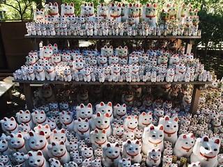 Lucky cats 招き猫たち(TOKYO JAPAN )