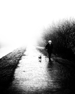 Misty Dog Walker