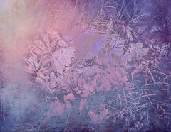 Winter Fantasy - Happy New Year 2018! (Colormaniac too - Many thanks for your visits!) Tags: frost winter winterfantasy fantasy colorful leaves grass nature outdoors frostedleaves foliage topazstudio topaztextureeffects
