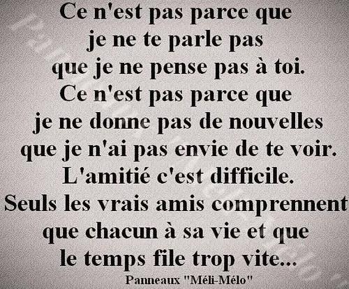 Belle Citation Damitié Citation Amitie Jen Vie Beaucoup