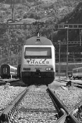 brig - settembre 2017 #8 (train_spotting) Tags: brig briga brigue valais wallis bbcffffs sbb re4600052 valdanniviers slm abb thales nikond7100