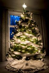 2017 Christmas-42 (Michael L Coyer) Tags: christmas lights night decorations bulbs trees christmastrees tinsel garland