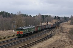 2TE10 in Skaista (berlinger) Tags: skaistaandžāni lettland 2тэ10 2te10 беларускаячыгунка belarusianrailway latvia train railways locomotive бч bch