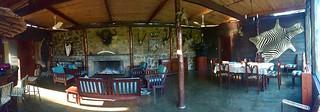 Zimbabwe Cape Buffalo Hunt 44
