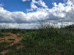 Crosby Coastal Park (brimidooley) Tags: crosby liverpool england merseyside uk greatbritain city citybreak travel sightseeing angleterre engeland inghilterra inglaterra anglia sefton