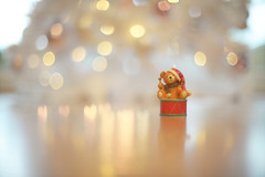 Little Drummer Bear... (KissThePixel) Tags: christmas christmastree merrychristmas bear drum bokeh goldbokeh heart heartbokeh nikon nikondf aperture nikkor nikkor12 f12 stilllifephotography stilllife reflection home light pastel soft 50mm macro