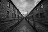 Auschwitz death camp (Vagelis Pikoulas) Tags: autumn november 2017 poland bw tokina 1628mm landscape auschwitz death camp memorial ww2 history