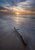 Driftwood (Alex Savenok) Tags: driftwood seashore sea mediterraneansea israel israelnature d610 sunset clouds hoftzhuk relaxing