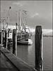 Greetsiel Harbor, Nov 2017 (Gentle***Giant) Tags: greetsiel kutter fischkutter krummhörn ostfriesland hafen