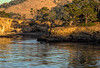 Sundown at Coal Chute Cove (RPA-Home) Tags: pointlobos whalerscove seascape