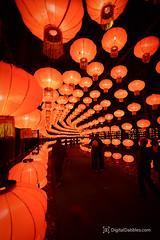 DSC_1449-Edit (DigitalDabbles) Tags: chinese lantern koka booth cary nc festival