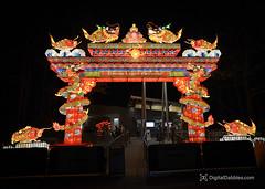 DSC_1443-Edit (DigitalDabbles) Tags: chinese lantern koka booth cary nc festival