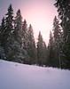 Winter Glow (laurilehtophotography) Tags: 2017 laajavuori talvi suomi finland jyväskylä winter forest winterwonderland nature snow glow sunset sky landscape nikon d610 tamron 2470mm amazing europe world maisema metsä auringonlasku