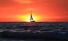 Sailing at sunset - Tel-Aviv beach (Lior. L) Tags: sailingatsunsettelavivbeach sailing sunset telaviv beach sailboat telavivbeach isreal sky redsunset