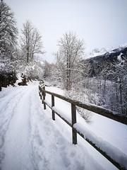 Nel bianco ! #montagna #vallecamonica (losting75) Tags: vallecamonica montagna