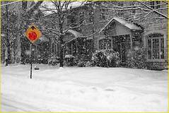 171229 Toronto Snowfall (14) (Aben on the Move) Tags: snow winter cold snowfall toronto canada willowdale