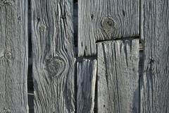 Settler siding (Rocky Pix) Tags: settlersiding wood roughcut lumber siding rameyplace farm shed pastoral cranehollow hygieneroad hygiene longmont boulder county colorado rockies stvrain river basinrockypixrockymountainpixw michel kiteleyf16140thsec34mm2470mm f3545 nikkor normalzoom handheld
