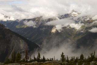 Abbott Ridge trail (explored)