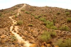 Trail Up Peak (ksblack99) Tags: southmountain phoenix arizona mountains trail sunset