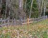New Old Stock. (Omygodtom) Tags: outdoors oregon senery scenic scene setting fence woods forest trail park path nikkor nature nikon dof d7100 digital contrast nikon70300mmvrlens tree