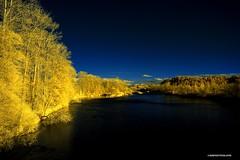 Willamette River - infrared - HSS! (JSB PHOTOGRAPHS) Tags: dsc544500001 copy willametteriver infrared hss nikon d70 infraredconvertedcamera river colorswap water eugeneoregon sliderssunday 720nm