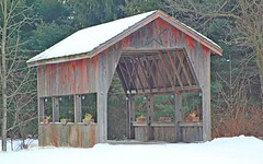 Cute little covered bridge. (anneescott) Tags: coveredbridge bridge