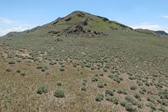 Sagebrush'n'grassland up a slope. (Tim Kiser) Tags: 2016 20160530 antelopeisland antelopeislandstatepark antelopeislandstateparklandscape antelopeislandlandscape artemisia daviscounty daviscountyutah daviscountylandscape dooleyknobspur dooleyknobspurtrail dooleyknobtrail greatbasinlandscape greatsaltlake img9566 may may2016 memorialday utah utahlandscape expansiveview grassland grasslandlandscape lake mostlysunny mountain mountainlandscape mountainouslandscape northutah northernutah northernutahlandscape park sagebrush sagebrushlandscape saltlake scrubland scrublandlandscape shrubland shrublandlandscape slope statepark sunnylandscape syracuse unitedstates us