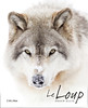 Le Loup - Shaun Ellis (Jim Cumming) Tags: bookcover publsihed wolf timberwolf book nature wildlife