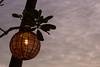 Lantern (tommyajohansson) Tags: rakhine myanmarburma mm tommyajohansson geotagged ngpalibeach bayofbengal