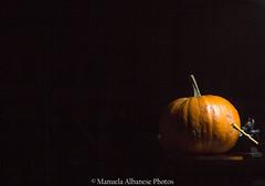 Esperimenti ... (manuela albanese) Tags: pumpkin autumn autunno manuela albanese photo canon prove studio stilllife still zucca orange home