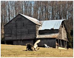 Standing tall (cscott_va.) Tags: barn rockbridgecounty virginia