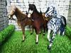 DSCN1690 (kreata_musateka) Tags: horse doll toy 16 handycraft dollhouse