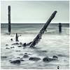 Tripod: Sea Dance (Shaun S. Leatham) Tags: point spurn sony 1650 sea sand water north yorkshire hull wood england uk coast