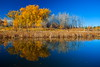 Plume (stevenbulman44) Tags: color landscape autumn fall canon filter polarizer alberta bluesky water reflection 1740f40l