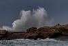 Tregastel (Oric1) Tags: tregastel bretagne waves breizh brittany sea mer manche vague goéland marin wind vent tempête jeanlucmolle