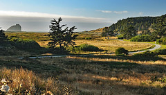 Cape Blanco Pastures by the Sea along Oregon Coast in July 2016 (yeoldmenogynguide60) Tags: cape blanco pastures sea oregon coast sunset