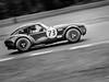 AC Cobra (PINNACLE PHOTO) Tags: ac cobra racing panning brandshatch car racecar 73 fast motor sport auto speed martinbillard