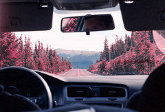 Essence of a Roadtrip (Hayden_Williams) Tags: colorful colorado colors color pink pinetrees summer surreal infrared car drive driving interstate interior road roadtrip trip travel adventure free freedom dashboard film fd50mmf35macro canonae1 analog analogue kodakportra400