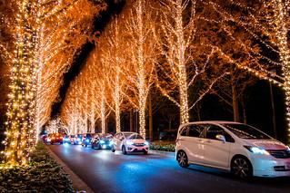 Merry Christmas! (ROHM Illumination, Kyoto)