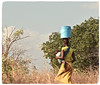 The Balancing Act (The Spirit of the World) Tags: mozambique candid hillside trees deserted everydaylife africa eastafrica baby mother bucket locals