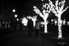 Christmas at Liberty Station (//ZERO) Tags: christmas christmaslights christmas2017 libertystation libertypublicmarket sandiego pointloma festive fujifilm fujifilmxpro1 xpro1 mirrorless voigtländer voigtlander colorskopar35mmf25mc colorskopar2535mmmc voigtlandercolorskopar2535 voigtlandercolorskopar35mmf25mc