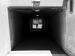 Man in tunnel (Macr1) Tags: 61403327236 afsnikkor28300mmf3556gedvr architecture australia bw blackwhite builtenvironment camera conditions d810 day default filters leederville lens location markmcintosh miscellaneous nikon nikond810 nikongpsunitgp1a outdoor structure sunny tunnel wa westernaustralia macr237gmailcom ©markmcintosh