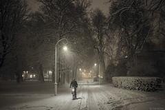 Huiswaarts (Tim Boric) Tags: haarlem kenaupark avond dark night sneeuw snow fietser cyclist winter