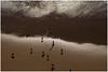 DSCF6586 (Michèle DURIEU) Tags: mer falaises sagrès algarve portugal mouettes océan soleil levant