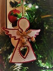 Merry Christmas (Luigia80 (Pat)) Tags: natale auguri 2017 angioletto albero christmas merrychristmas