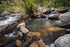 Scream in silence (David de Groot) Tags: cedarcreek rockpool scream face longexposure rocks water queensland australia au