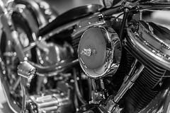 Easy Rider (VintageLensLover) Tags: motorrad bike easyrider chopper psspeicher einbeck museum bokeh dof schärfentiefe tiefenschärfe edelstahl