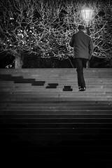 (Px4u by Team Cu29) Tags: nacht mann hut telefon telefonieren treppe spazieren sprechen unterhalten kommunizieren dresden brühlscheterasse laterne strasenlicht strasenlaterne