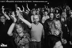 2017 Bosuil-Het publiek bij The Road Home en Vandenberg's Moonkings 3-ZW